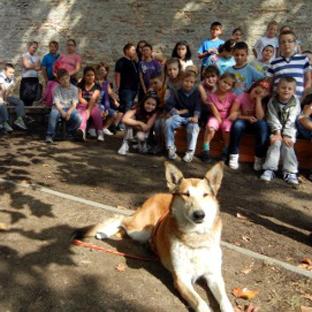 Fifi és Vacak a gyerekek kedvencei, avagy nemcsak a kutyaiskolában tanítunk...