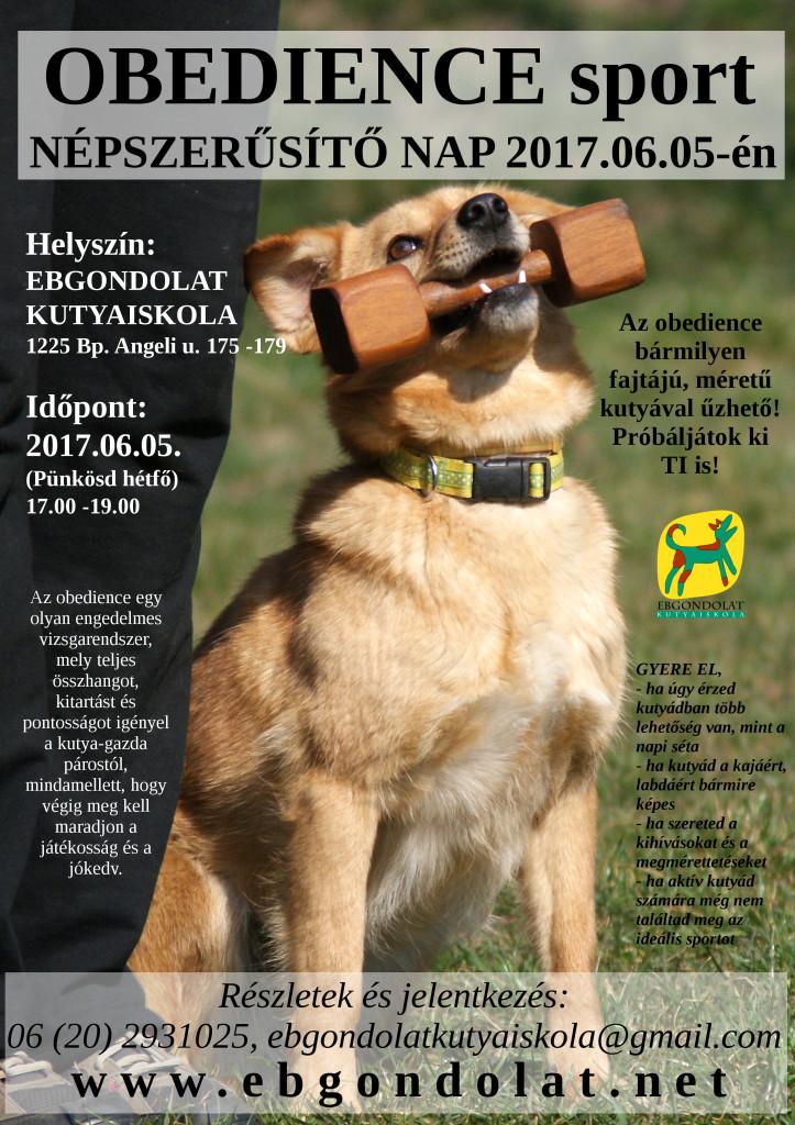 plakat_5_szutyi_2