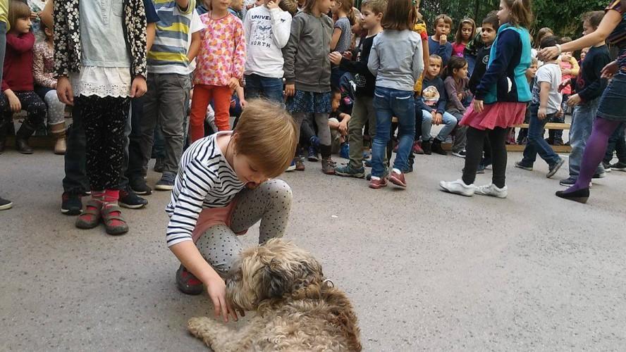 Előadás a felelős állattartásról