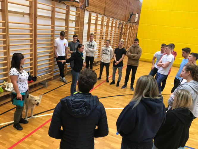 Állatvédelmi oktatás és kutyás-frizbis foglalkozás